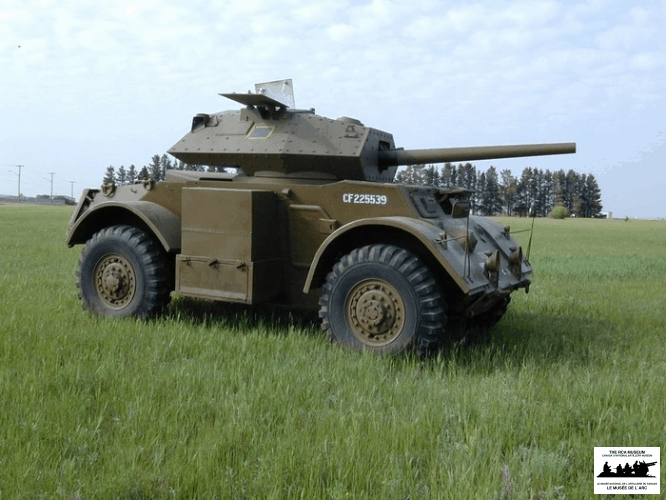 Staghound